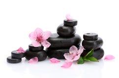De stenen van het kuuroord met dalingen en roze sakurabloemen Stock Afbeelding