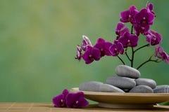 De Stenen van het kuuroord met orchidee Stock Fotografie