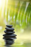 De stenen van het kuuroord zen Stock Fotografie