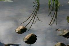 De stenen van het meer stock fotografie