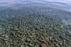 De Stenen van het ondiepe Water Stock Foto