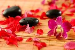 De stenen van Orchis en van de therapie Royalty-vrije Stock Afbeeldingen