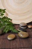 De stenen van Wellness stock foto's