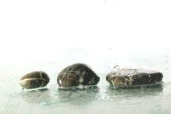 De stenen van Zen met dalende waterdalingen Royalty-vrije Stock Afbeelding