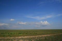 De steppelandschap van de Zwarte Zee Stock Foto's