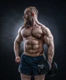 De sterke bodybuilder met zes pakt, perfectioneert abs, schouders, bicepsen in royalty-vrije stock foto