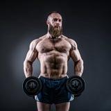 De sterke bodybuilder met zes pakt, perfectioneert abs, schouders, bicepsen in Stock Foto's