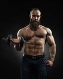 De sterke gebaarde bodybuilder met zes pakt, perfectioneert abs, schouders in Royalty-vrije Stock Afbeelding