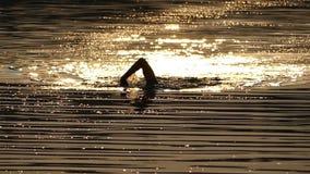 De sterke Mens zwemt Front Crawl in een Fonkelende Rivier bij Nacht in de Zomer stock videobeelden