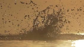 De sterke mens zwemt vlinder in een meer bij zonsondergang in slo-mo stock video