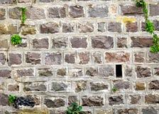 De stevige Achtergrond van de Muur van de Steen Stock Foto