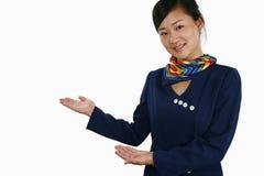 De stewardess van de lucht Stock Foto