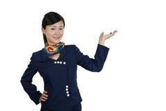De stewardess van de lucht Stock Foto's