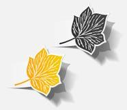 De sticker de realistische objecten van de herfst reeks van het schaduwblad Stock Foto's