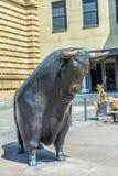 De Stier en draagt Standbeelden bij Royalty-vrije Stock Foto's