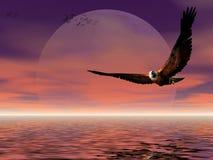 De stijging van de maan met adelaar. Royalty-vrije Stock Afbeeldingen