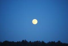 De Stijging van de volle maan Royalty-vrije Stock Foto's