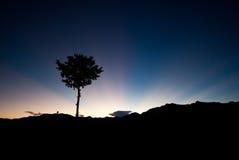 De stijging van de zon van Alishan, Taiwan Stock Afbeeldingen