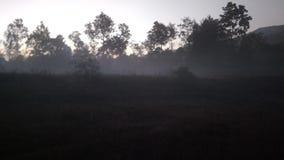 De stijging van de ochtendzon stock foto