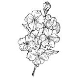 De stijl van de bloemets vector illustratie