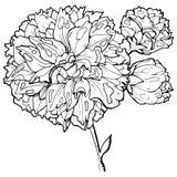 De stijl van de bloemets royalty-vrije illustratie