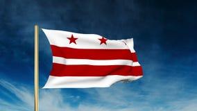 De stijl van de de vlagschuif van Washington gelijkstroom Het golven in de winst stock footage