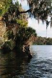 De Stijl van de Rivier van Florida Royalty-vrije Stock Afbeelding