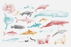 De stijl van de illustratietekening van mariene het levensinzameling vector illustratie