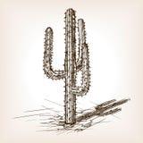 De stijlvector van de cactushand getrokken schets vector illustratie
