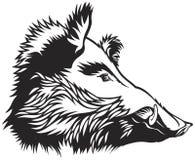 De stijlvector van de everzwijn hoofdgraveur scratchboard stock foto