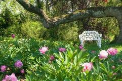 De stoel van het gazon dichtbij bloembed Stock Afbeelding