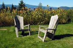 De stoelen van Adirondack in de zon royalty-vrije stock afbeelding