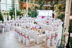 De stoelen van de huwelijksgast met roze linten bij huwelijkszaal Stock Afbeeldingen