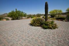De Stoep van het Terras van de Oprijlaan van de Baksteen van de betonmolen met Saguaro C Royalty-vrije Stock Afbeelding