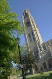 De stomp van Boston, het UK royalty-vrije stock afbeeldingen