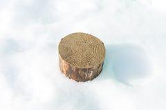 De stomp van een boom met jaarringen in de sneeuw Royalty-vrije Stock Foto's