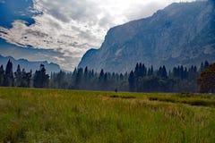 De stora ängarna av den Yosemite nationalparken USA Royaltyfri Bild