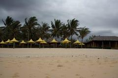 De storm van het moessononweer op het strand met palmen en paraplu's Royalty-vrije Stock Afbeeldingen