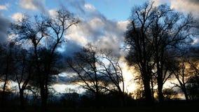 De stormachtige winter Royalty-vrije Stock Afbeeldingen