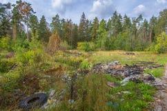 De stortplaats van het huisvuil in bos Stock Foto
