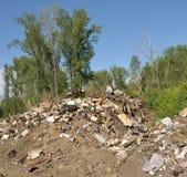 De stortplaats van het huisvuil in bos Royalty-vrije Stock Afbeeldingen