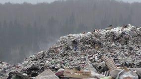 De stortplaats van het stadshuisvuil stock video