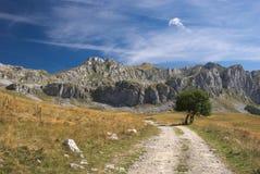 ` De Stozac do ` da montanha perto do lago Kapetanovo, Montenegro Imagens de Stock