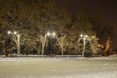 De straat met lantaarns in de winter bij nacht royalty-vrije stock foto's
