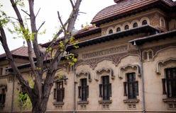 De straat van Boekarest Stock Foto