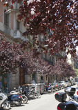 De straat in 10 van de binnenstad kan 2010 in Barcelona, Spanje Stock Foto