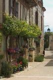 De straat van de bloem stock fotografie