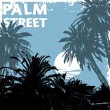 De straat van de palm Royalty-vrije Stock Afbeelding