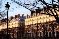 De straat van Parijs Rivoli façades van Tuileries-Tuinen bij zonsondergang Royalty-vrije Stock Foto