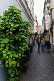 De straat van Rudesheim Stock Afbeeldingen